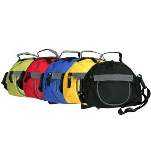 2-in-1 sling bag & waist pouch